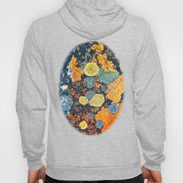 Lichen Art Hoody