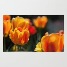 Tulips in the Garden Rug