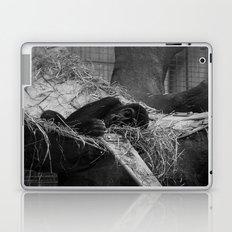 Sleepy Soul Laptop & iPad Skin
