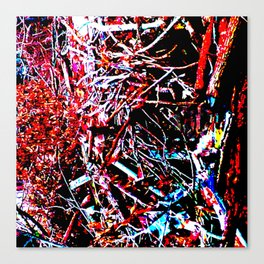 Thicket Canvas Print