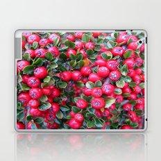 Rojo y Verde Laptop & iPad Skin