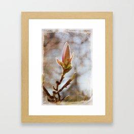 AFE Magnolia Framed Art Print