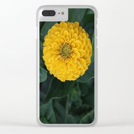 Yellow Zinnia Clear iPhone Case