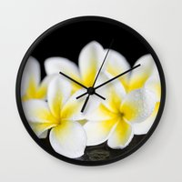singapore Wall Clocks featuring Plumeria obtusa Singapore White by Sharon Mau