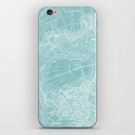 Polar Chill iPhone Skin