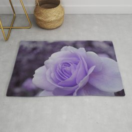 Lavender Rose 2 Rug