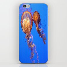 JellyFish. iPhone & iPod Skin