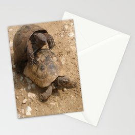 Slow Love - Tortoises Stationery Cards