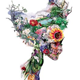 Art Print - Don't Kill The Nature - RIZA PEKER
