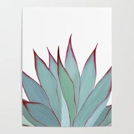Elegant Agave Fringe Illustration Poster