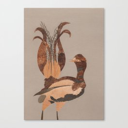 Lyrebird Canvas Print