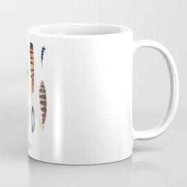 British Birds: Feathers Coffee Mug