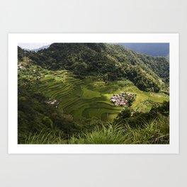 Rice Terraces of Banaue, Philippines Art Print