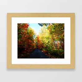 Into the Fall Forest Framed Art Print