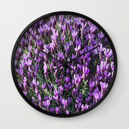 SPANISH LAVENDER AND ONE BEE Wall Clock