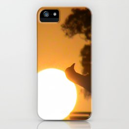 Pigeon Eclipse iPhone Case