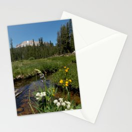 King's Creek Wildflowers Stationery Cards