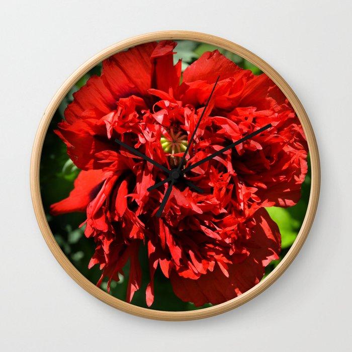 Crimson Peony Poppy Wall Clock