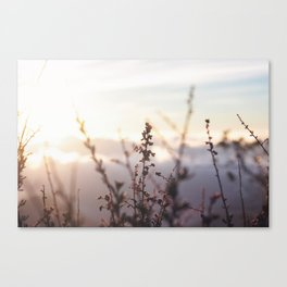 Cloud 9 Canvas Print