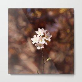 Blossom (Square) Metal Print