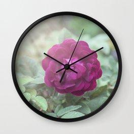 Raspberry Roses on Aqua and Mint Wall Clock