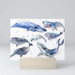 Whales, Whale design, whale wall art, sea, marine aquatic animal art, school learning wall Mini Art Print