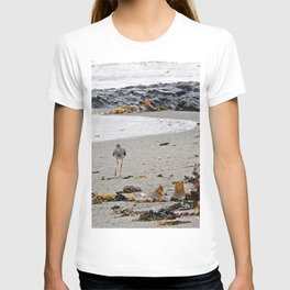 Greater Yellowlegs Strolling on the Beach T-shirt