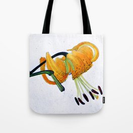 Orange Flower Botanical Illustration - Illustration botanique d'une fleur orange  Tote Bag