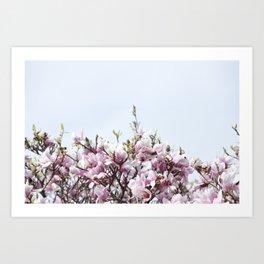 Blossom III Art Print