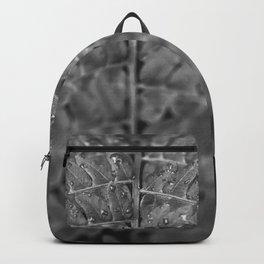 Jungle Rainfall Backpack