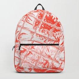 Fire Garden Reflections Backpack