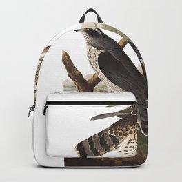 Goshawk, Birds of America, Audubon Plate 141 Backpack