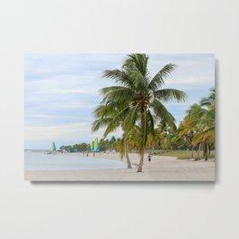 Coconut Cove Metal Print