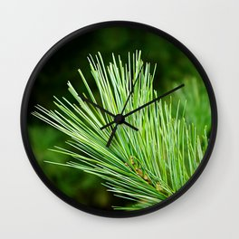 White pine branch Wall Clock