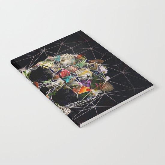 Fragile Skull Notebook