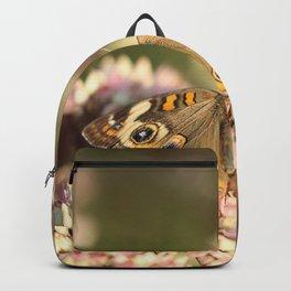 Buckeye Butterfly Macro Backpack