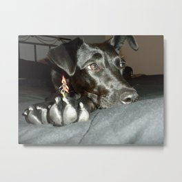 Zoey Metal Print