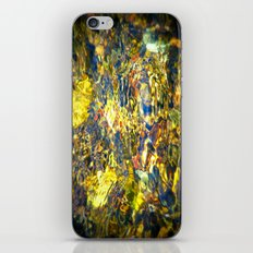 Sutter Creek iPhone & iPod Skin