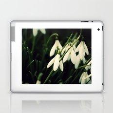 Snowdrops Laptop & iPad Skin