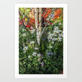 Rural landscape with a birch tree Art Print