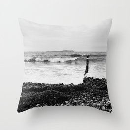 Wave Throw Pillow