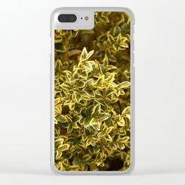 Carolina Clear iPhone Case
