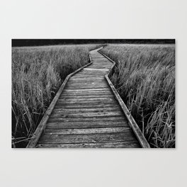 Crooked Path Canvas Print
