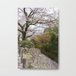 The Philosopher's Path Metal Print