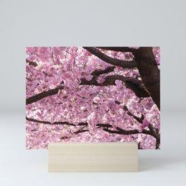 Cherry Blossom Trees Mini Art Print