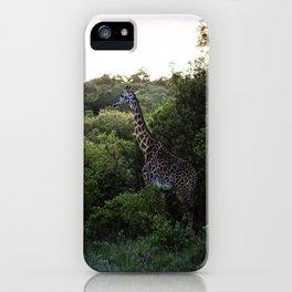 Sunrise Giraffe  iPhone Case
