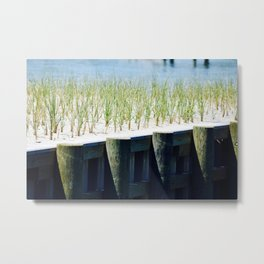 Tranquil Moments Metal Print