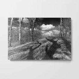 Carrion Metal Print