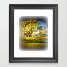 Fallen Leaves Framed Art Print