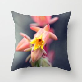 Echeveria Runyonii Habitus Inflorescences Throw Pillow